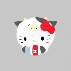 cute sanrio stickers & more :)